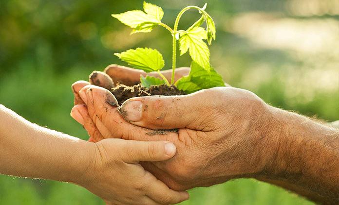 Top 5 des habitudes pour économiser et avoir moins d'impact sur l'écologie